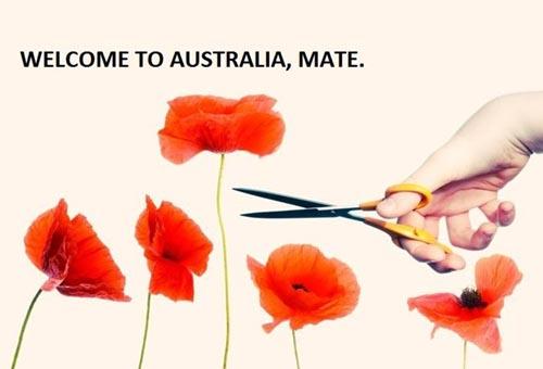 10 dieu gay ngac nhien cho nguoi lan dau toi Australia 1.2
