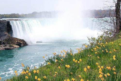Niagara mua xuan 1